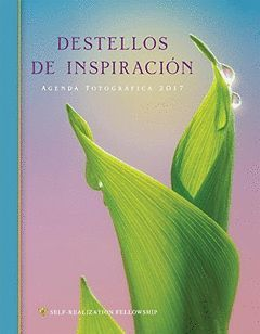 DESTELLOS DE INSPIRACION