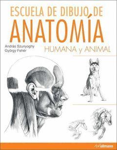 ESCUELA DIBUJO ANATOMIA HUMANA Y ANIMAL
