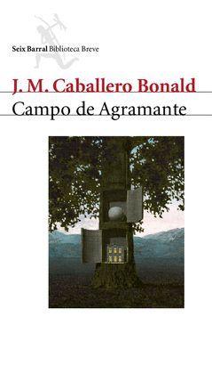 CAMPO DE AGRAMANTE.SB-BREVE-RUST