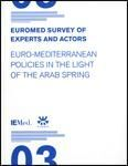 EUROMED SURVEY OF EXPERTS AND ACTORS III.