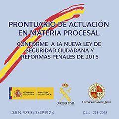 PRONTUARIO DE ACTUACIÓN EN MATERIA PROCESAL CONFORME A LA NUEVA LEY DE SEGURIDAD