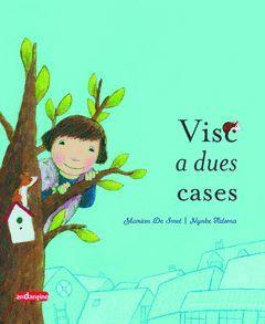 VISC A DUES CASES